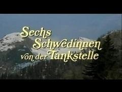 Sechs Schwedinnen- Teo69