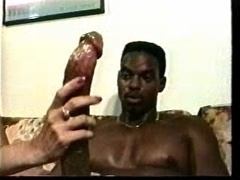 Ebony babes and black studs in latest hardcore vids