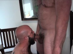 Bear barebacking cub after getting sucked