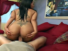 Lusty slut's tits bounce while she rides cock reverse cowgirl