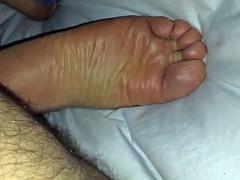 Persian soles